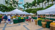 Arsht Center Market Mondays